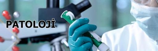Patoloji Nedir?