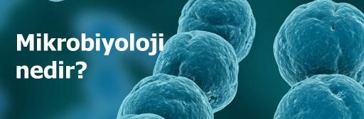 Mikrobiyoloji Nedir?